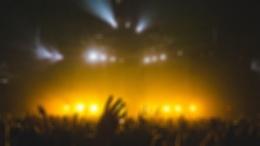 Infected Mushroom станут гостями музыкального уик-энда «Дикая Мята Violet»