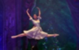 Спектакль «Щелкунчик. Балет под руководством В.Гордеева»