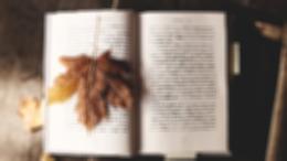 Между реальностью и фантазией: зачем читать Достоевского