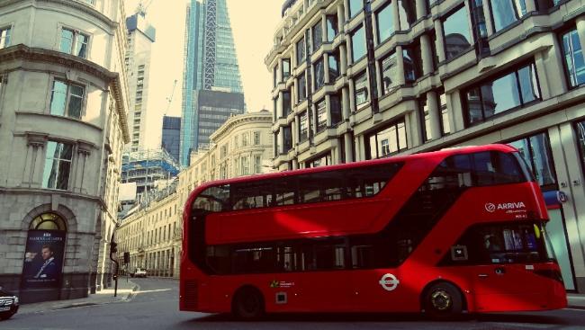 Самые интересные автобусные экскурсии