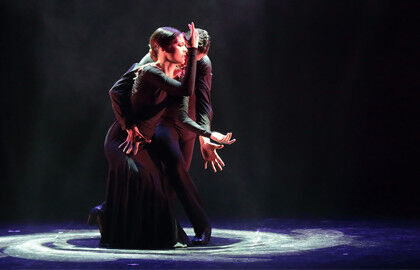 Шоу «Ballet flamenco espanol»
