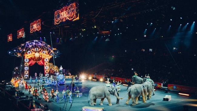 Шоу «Всё будет хорошо!» переворачивает представление о современном цирке